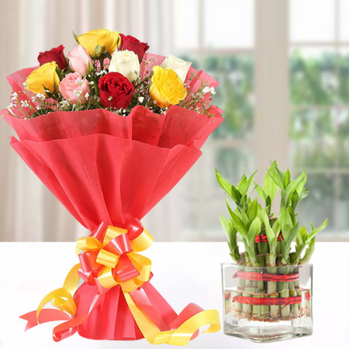 Mixed Roses With Lucky Bamboo
