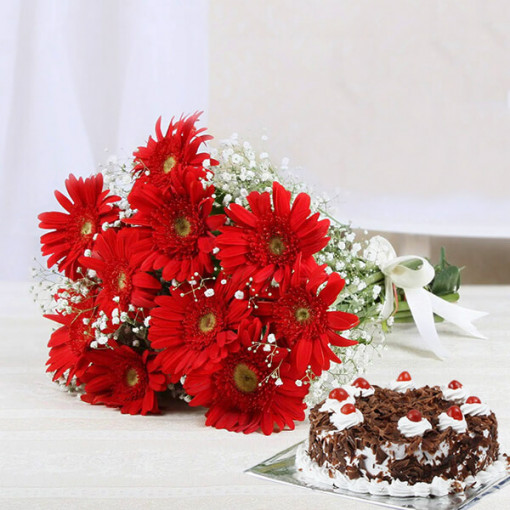 Red Gerbera With Black Forest Cake
