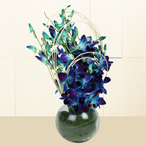 Vase of Blue Orchids