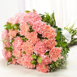 Exquisite Carnations