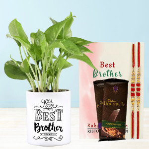 Rakhi With Money Plant In Personalised Best Brother Mug
