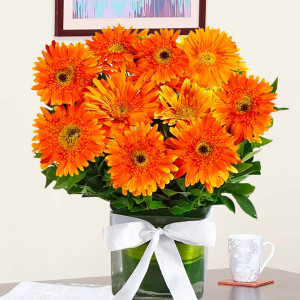 Vase Arrangement of Orange Gerberas