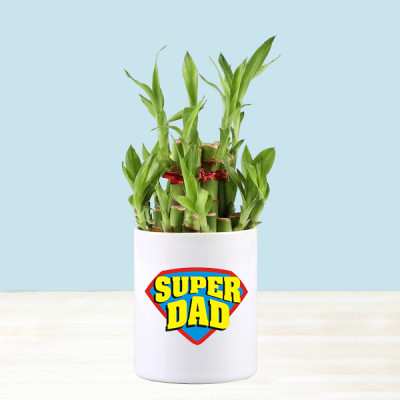2 Layer Bamboo In Super Dad Mug