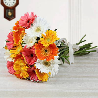 Colorful Gerberas Bunch