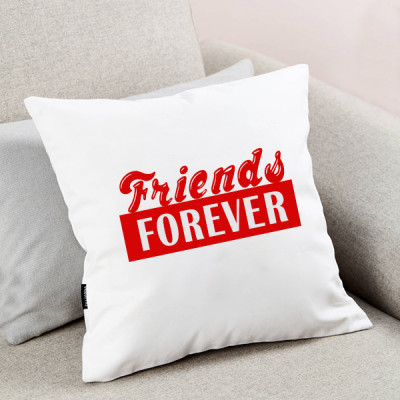 Friends Forever Cushion