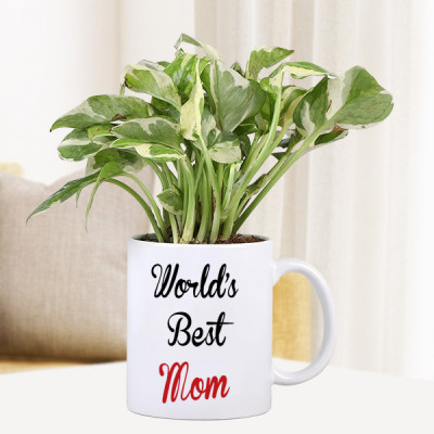 Personalized Mug With Plant For Mom